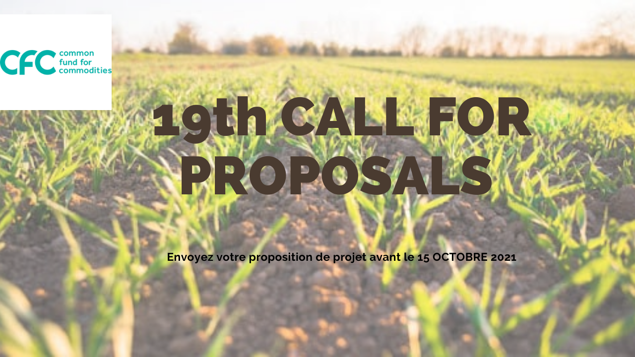 19 th CALL FOR PROPOSALS